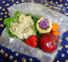 Wonton Field Trip Bento Box Lunches Lunch Bags Disposable