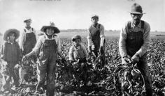 """Photograph, c. 1920. This photograph shows a group of non-European farmers, including some children. Throughout the 1920s many non-Europeans were frustrated with the extremely low wages and sometimes bad conditions. Many farmers and miners were starving. They worked a much more physical job than many European (""""white"""") Canadians, yet they received much lower wages. This frustration lead to many strikes and unhappy workers."""
