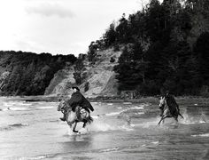 Gauchos ride on Isla Victoria, a twelve-mile-long wooded wilderness in the middle of Lake Nahuel Huapi. Horses outnumber visitors ten to one here