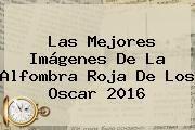 http://tecnoautos.com/wp-content/uploads/imagenes/tendencias/thumbs/las-mejores-imagenes-de-la-alfombra-roja-de-los-oscar-2016.jpg Nominados al Oscar 2016. Las mejores imágenes de la alfombra roja de los Oscar 2016, Enlaces, Imágenes, Videos y Tweets - http://tecnoautos.com/actualidad/nominados-al-oscar-2016-las-mejores-imagenes-de-la-alfombra-roja-de-los-oscar-2016/