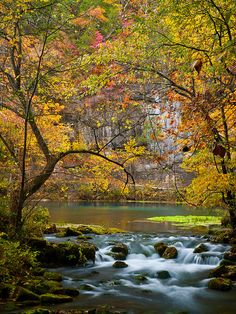 Alley Spring and Mill . Ozark National Scenic Waterways . Missouri.