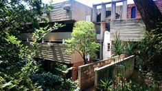 Brasserie de Paris, House Jooste, Pretoria Pretoria, African, Contemporary, Architecture, Plants, House, Arquitetura, Home, Haus