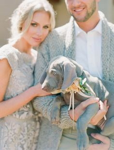 How to Incorporate your Dog in your Wedding // This darling Weimaraner pup was gorgeous in this couple's gray themed wedding.