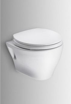 CWT418MFG-2#01 Wall-Hung Toilet & Duofit In-Wall Tank System contemporary-toilet-accessories