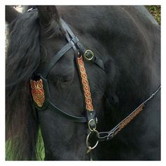 Awesome bridle and pretty Friesian horse.