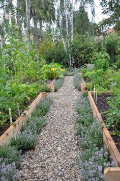 garden box  path