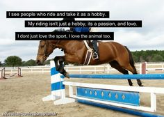 When people ask you how much horses mean to you and you just cant find the words, you know it's truly a passion