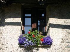 All sizes | Flowery windows. Blumen Fenstern. | Flickr - Photo Sharing!