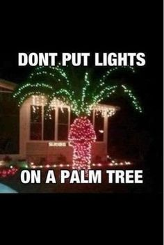 More Funny Christmas Pictures