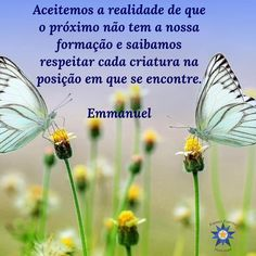 Tiny Miracles, Goeie More, Dandelion, Spirituality, Thoughts, Quotes, Videos, Inspiration, Good Morning Wishes