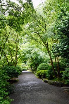 Portland Japanese Garden, Sidewalk, Country Roads, Sidewalks, Pavement, Walkways