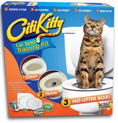 How Do You Potty Train A Cat? Here's How ... see more at PetsLady.com ... The FUN site for Animal Lovers