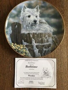 22ct Gold Trimmed Westie West Highland White Terrier Collector Plate 'Bathtime'  | eBay West Highland White, White Terrier, Westies, Bath Time, Terriers, The Collector, Plates, Gold, Animals