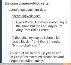 Fat Amy as the Fat Lady. Tbh you could replace any character with Fat Amy and it'd be a thousand times better. Harry Potter Love, Harry Potter Universal, Harry Potter Fandom, Harry Potter Memes, Fat Amy, No Muggles, Hogwarts Letter, Yer A Wizard Harry, What Do You Mean