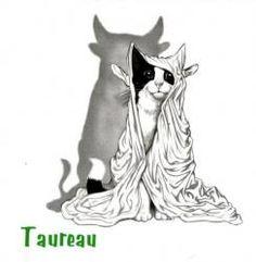 taureau astrologie chat