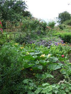 Beatrix Potter's Garden