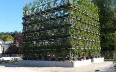 Γερμανία: Θεμέλια στο σπίτι από δέντρα   Με Αφορμή   Η ΚΑΘΗΜΕΡΙΝΗ