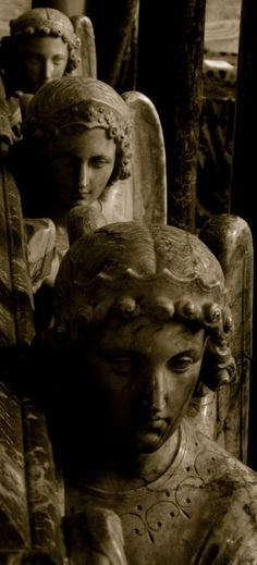When we worship God, our angels add their prayers and turn our single voices into hundred-part harmony. ~Quoted in The Angels' Little Instruction Book by Eileen Elias Angelic procession,Winchester Cathedral.England.