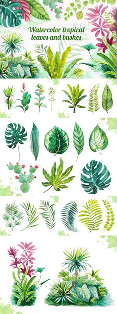 Watercolor Tropical Leaves - Part of The Neverending Bundle of Superior Quality . - Watercolor Tropical Leaves – Part of The Neverending Bundle of Superior Quality Designs - Watercolour Painting, Watercolor Flowers, Painting & Drawing, Drawing Board, Chiaroscuro, Tropical Leaves, Botanical Art, Art Inspo, Art Drawings