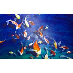 would mount koi floating above so they would cast their own shadows.