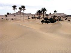 2007 - #Libia, pustynia, fot. 8 stóp akcja #uchodźcymilewidziani Countries, War, Beach, Outdoor, Outdoors, The Beach, Beaches, Outdoor Games, The Great Outdoors