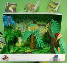 Rainforest dioramas are often made from an old shoe box to start with. Description from 3dgeography.co.uk. I searched for this on bing.com/images