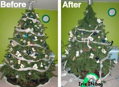 Why Christmas trees and cats don't mix. (See page for adorable pictures of cats in Christmas trees. Cat Christmas Tree, Naughty Christmas, Why Christmas, Christmas Holidays, Xmas, Christmas Ornaments, What Cat, Crazy Cats, Cute Pictures