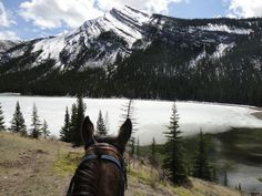 Amazing view.. Especially when seen between the ears of a horse