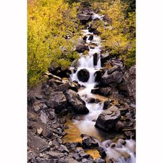 Creek water fall with fall colors aspen leaves, Colorado by mistyphoto
