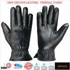 Men's Winter Genuine Leather Driving Gloves