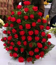 Do love a red rose...