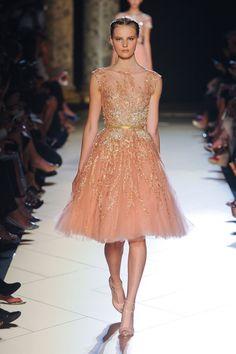 An absolute dream...Samantha's favorite color!  Elie Saab Fall 2012