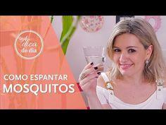 COMO ESPANTAR MOSQUITOS | A DICA DO DIA COM FLÁVIA FERRARI - YouTube
