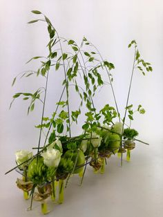 Ecole de Formation Jean-Louis Anxoine Modern Floral Arrangements, Flower Arrangements, Floral Style, Floral Design, Art Floral, Shop Interiors, Ikebana, Botanical Art, Flower Designs