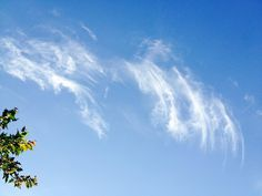 Wispy Clouds Credit: Love Life Images 2014