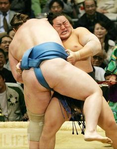 Hot.  Sumo! In Praise of an Ancient Sport