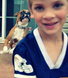 33 Most Epic Dog Photobombs On Pinterest - Dogtime