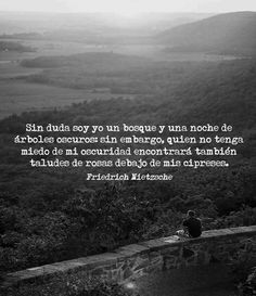 ... Sin duda soy yo un bosque y una noche de árboles oscuros: sin embargo, quien no tenga miedo de mi oscuridad encontrará también taludes de rosas debajo de mis cipreses. Friedrich Nietzsche