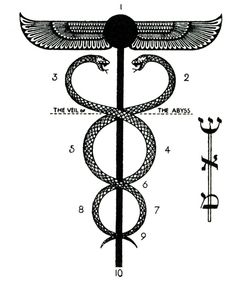 Union of Opposites: The Caduceus  Consider the snakes as they wind around the staff of Mercury. They are in eternal conflict. They are the opposites. Life & Death. Science & Art. Any pair of opposites you can imagine. They cannot unite at their own level, as Jung described because they are in eternal conflict.