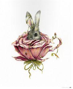 curvy bunny