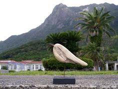 流木アートギャラリー森のもののけ 屋久島