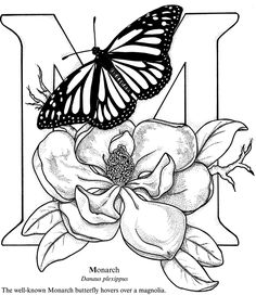 Butterfly Alphabet Coloring Book Sample § Welcome to Dover Publications Coloring Page 2 Coloring Pages To Print, Coloring Book Pages, Printable Coloring Pages, Free Coloring, Alphabet Coloring Pages, Butterfly Coloring Page, Desenho Tattoo, Mandala Coloring, Copics