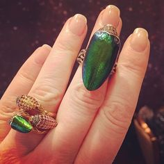 These #scarab rings by @bibivandervelden have actual scarab wings that would have ended up in the trash if she hadn't repurposed them. Read more about her in my latest blog post. Link in profile. #jewelryfashiontips #environmentallyconsciousjewelry #thisiscouture