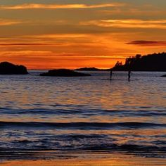 Sunset and stand up paddle boarders in Tofino on Vancouver Island, BC.   (Photo: @genevievefreeman via Instagram)  #exploreBC #exploreCanada