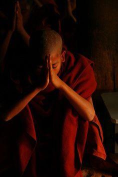 Buddhist monk praying, Myanmar