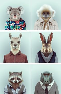 Animals in clothes.