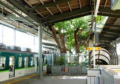 Big Kusu Tree of Kayashima, Japanese train station, Kayashima Station, Neyagawa train station, Kayashima Train Station, Kayashima Train Station Tree, nature-inspired design, green roofs train stations, green design, sustainable design