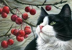 Black Cat ACEO Print Do I Need To Wake Up by by irinagarmashova