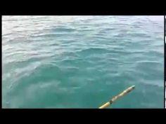 Big Fish Deep Sea Fishing in Thailand