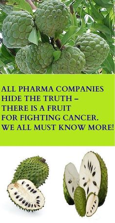 ALL PHARMA COMPANIES HIDE THE TRUTH – THERE IS A FRUIT FOR FIGHTING CANCER. WE ALL MUST KNOW MORE! – Stay Healthy Magazine #breastcancerinfographic